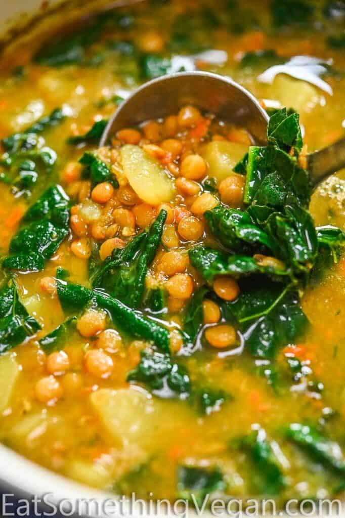 Lemon Lentil Soup on a ladle