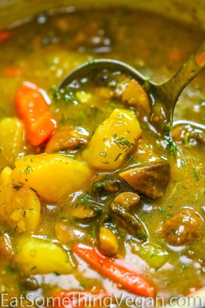 Mushroom Stew in a laddle
